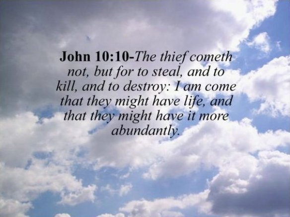 john 10 10 the thief