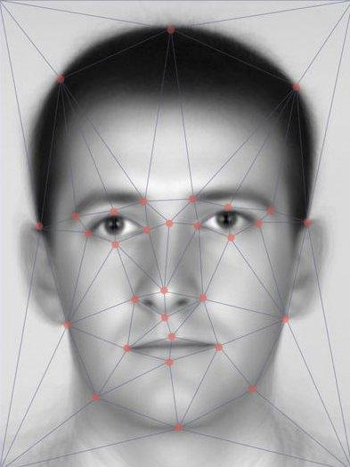 biometric facial plot