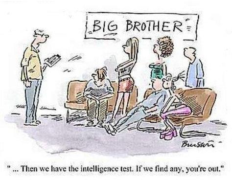 big brother likes dummies