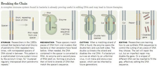 dna editing